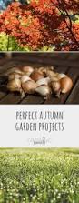 family garden ideas perfect autumn garden projects growing family garden ideas