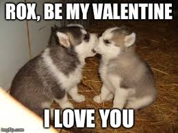Cute Valentine Meme - cute puppies meme imgflip