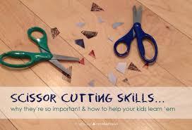 scissor cutting skills why they u0027re important u0026 how to learn u0027em