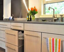 Furniture For Kitchen Cabinets by Ecofriendly Kitchen Healthier Kitchen Cabinets