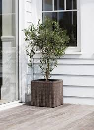 Large Tree Planters by Outdoor Pots U0026 Planters Metal And Wooden Industrial Garden