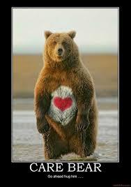 Funny Bear Memes - inspirational bear memes bear best of the funny meme
