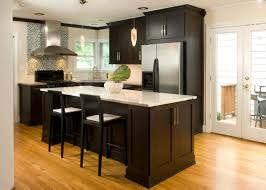 Kitchen Room Ideal Light Wood Kitchen Cabinets With Dark Wood - Dark wood kitchen cabinets