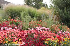 Idaho Botanical Gardens Idaho Botanical Janet Davis Explores Colour