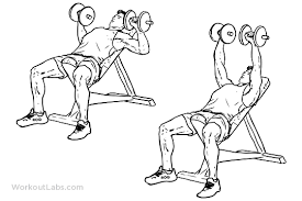 Bench Pressing With Dumbbells Dumbbell Bench Press Workout Program Eoua Blog