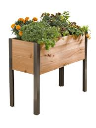 decoration nice compact salad garden planter convenient elevated
