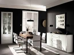 dark room color schemes entrancing dark colored rooms inspiration