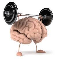november brain teaser fort wayne shop 14 69 auto