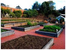 Botanic Gardens Hobart A Hobart Food Jaunt The Hungry Bon Vivant