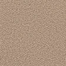 Lucky Home Home Decorators Collection Carpet Sample Expeditious I Color