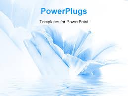 beautiful powerpoint templates casseh info