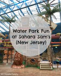 New Jersey travel pass images Sahara sam 39 s oasis new jersey ny foodie family jpg