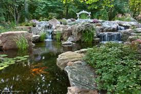 amazon com aquascape 98949 dry beneficial bacteria for pond and