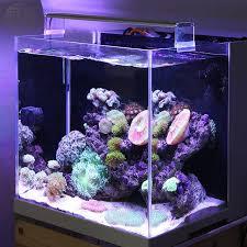 led reef aquarium lighting marine led light coral sps lps aquarium sea reef tank white blue