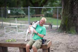 three cheers for volunteers jacksonville humane society