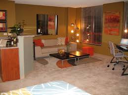 decorating basement apartment beautiful bedroom small ideas twin