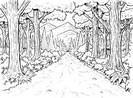 7 best images of forest coloring pages printable forest trees