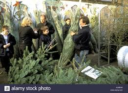 selling trees at columbia road flower market sunday