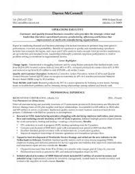 Sample Resume For Solution Architect free resume templates sample for job solution architect samples