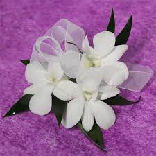 white orchid corsage orchid corsage in rockville md fiore floral