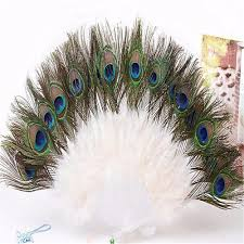 Peacock Decorations For Home Online Get Cheap White Peacock Decor Aliexpress Com Alibaba Group