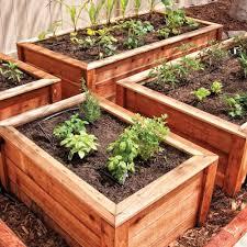hardscaping 101 drip irrigation gardenista lucas house u0026 garden