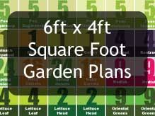 square foot gardening with raised beds