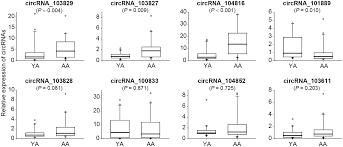 circular rna expression profiling of human granulosa cells during