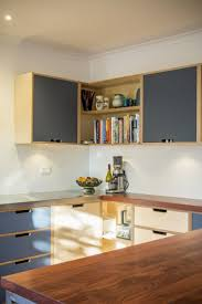 Birch Plywood Cabinets Kitchen Plywood Cabinets Kitchen Decoration