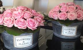 imagenes de rosas vintage centro de rosas vintage un patio con flores