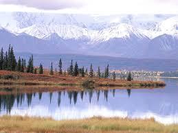 beach denali park alaska lake tundra national nature landscape