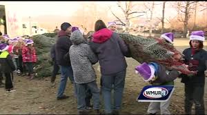 christmas trees from nh vermont sent to troops