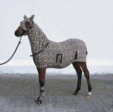 leopard area rug leopard print horse rug best decor things