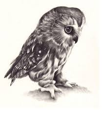 best grey realistic owl tattoo design on paper u2013 truetattoos