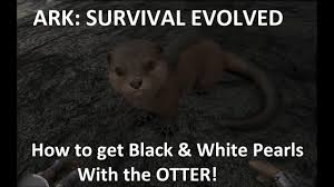 Survival Memes - ark survival evolved how to get black and white pearls with the