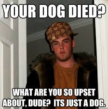 Morbid Memes - your dog died that sucks you should have done more