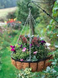 plant a winter hanging basket hgtv