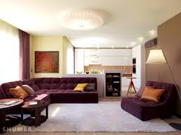 apartments splendid earth tone living room green wall paint and