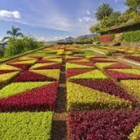 beautiful flower garden wallpapers download best hd wallpaper