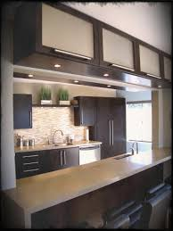 houzz small kitchen ideas kitchen indian design pictures houzz small kitchens layouts storage