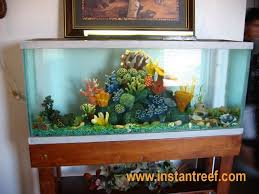 75 gallon freshwater fish tank with coral reef decor