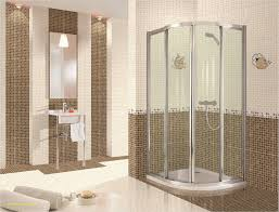 showers ideas small bathrooms inspirational corner shower ideas for small bathrooms small