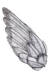 wing sketch shoulder bird and tattoo