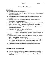 fillable online nitrogen cycle worksheet biology with mrs