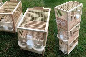 produttori gabbie per uccelli gabbie per uccelli in legno artigianali produzione e voliere anche