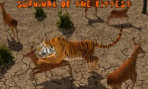 tiger apk vs tiger adventure apk for windows phone android