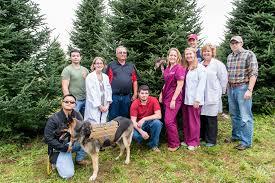 christmas tree farms in pa christmas lights decoration