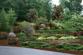 Backyard Slope Ideas Landscaping Hill Ideas Design Home Ideas Pictures Homecolors