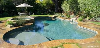 free form pools macaluso pools pools and spas gallery breathtaking images of