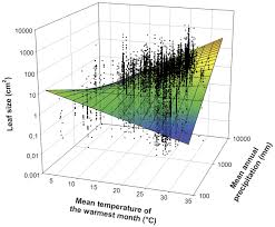 global climatic drivers of leaf size science